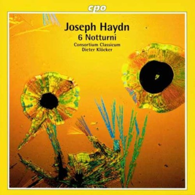 Haydn Klocker Notturni cover